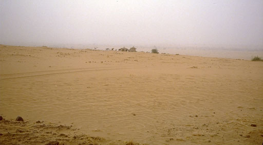 What is the main cause of the spread of desert conditions in the Sahel region?
